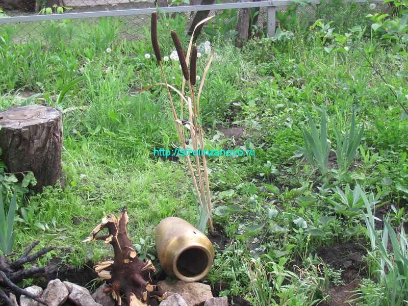 Пруд своими руками : с пленкой, чашей, мини-пруды из покрышки, растения