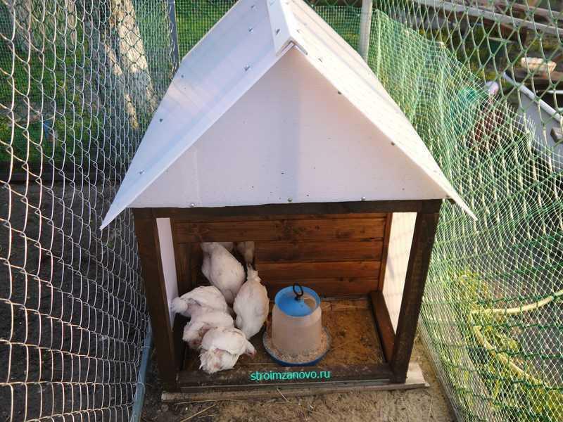 Сделать домик для цыплят своими руками 3