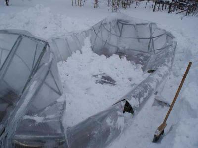teplica_pod_snegom